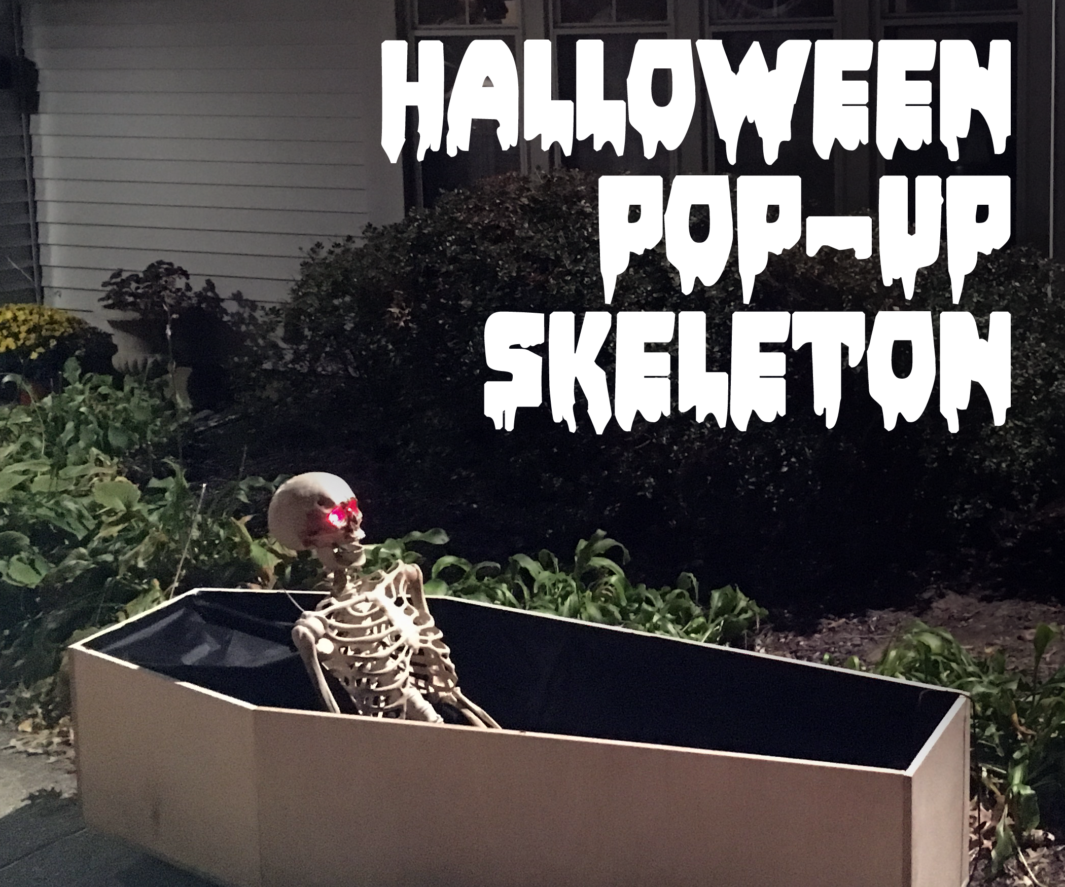 Halloween Pop-Up Skeleton (In a Coffin)