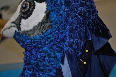 Velvety Peacock Topknots