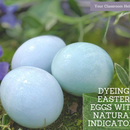 Cabbage Juice Easter Egg Dye