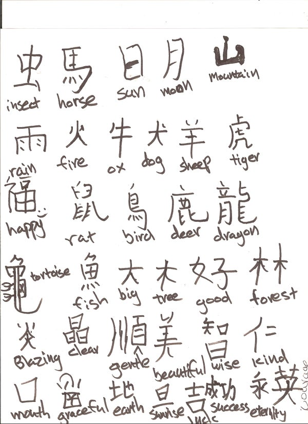 How to Write Chinese!!!