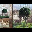How to Make Landscape Diorama|Stag Terrarium