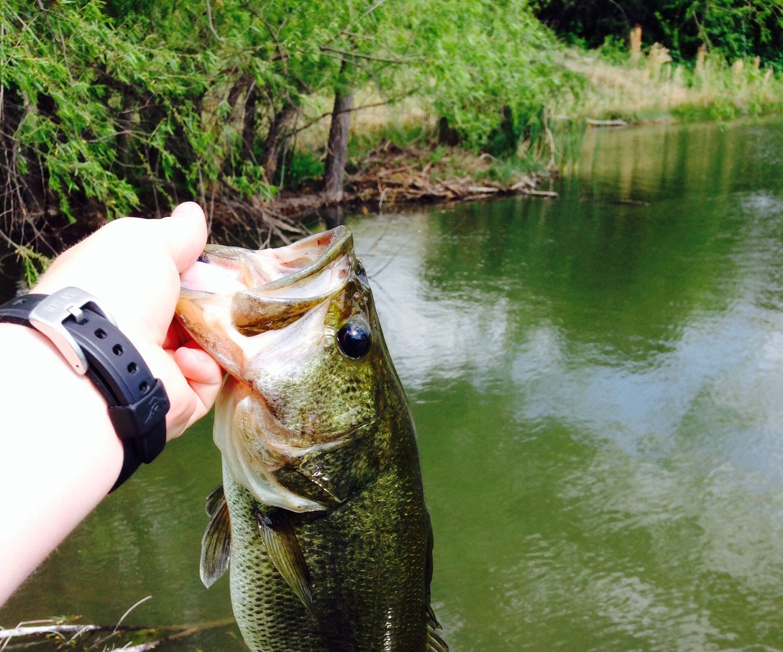How to re-spool a baitcasting reel