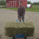 Hay Bale Dolly Assistive Technology