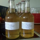 Simple Homemade Cider with a juicer and no press