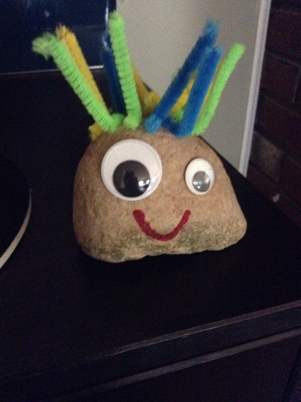 How to Make a Cool Pet Rock