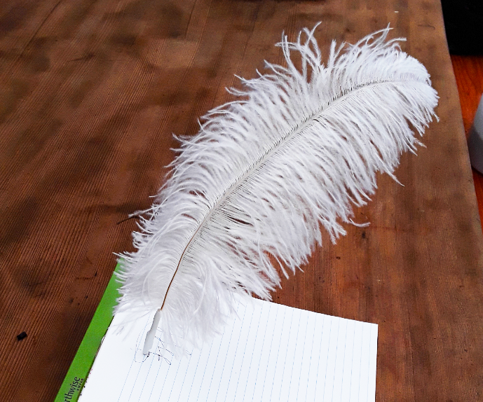 Magic Writing Quill