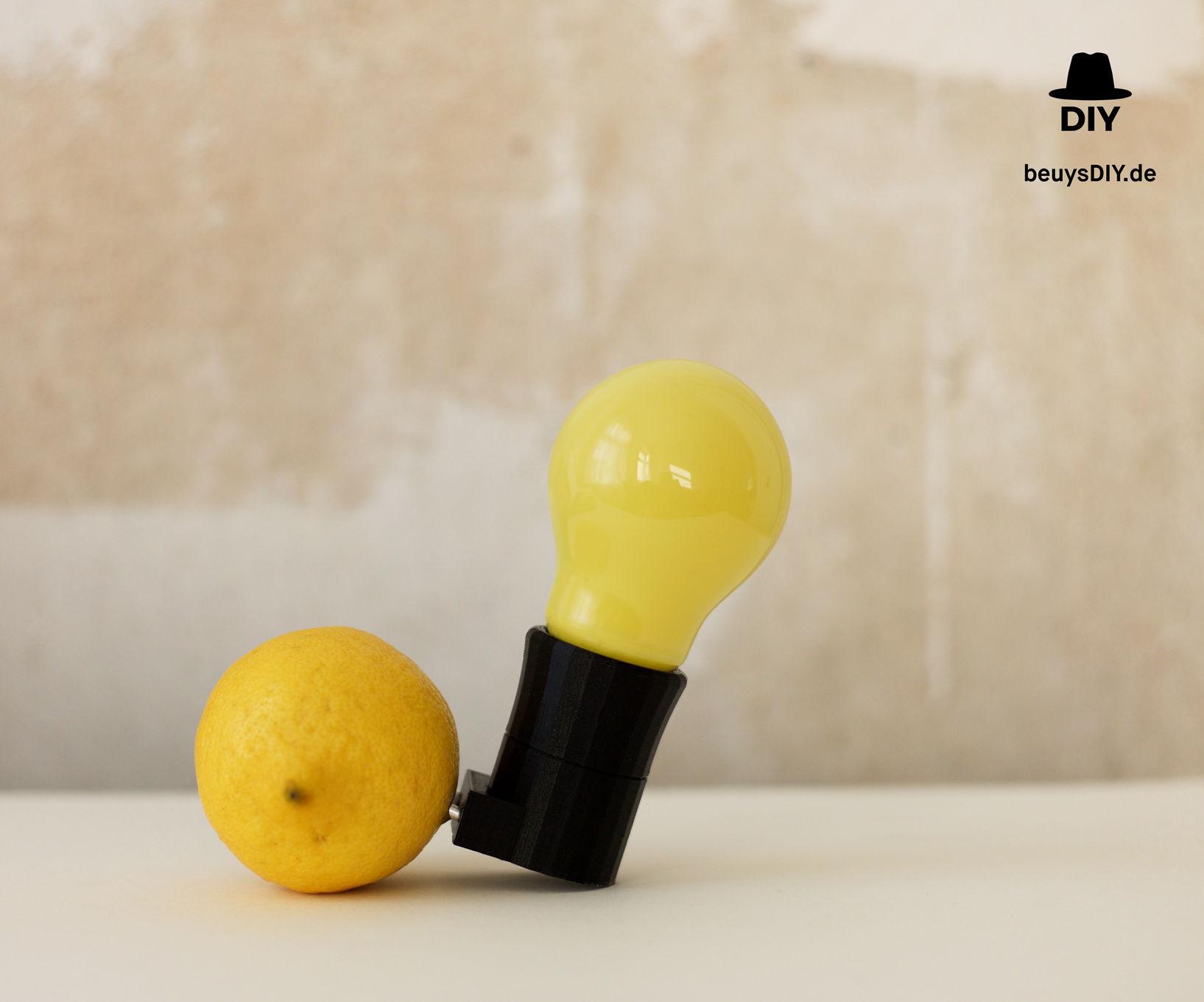 BeuysDIY - Capri-Batterie, Art Piece