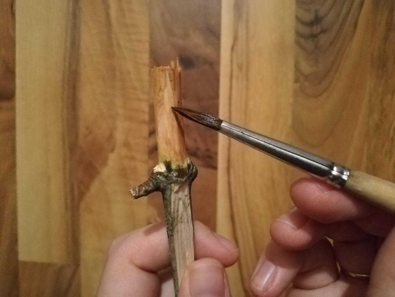 Optional: Paint the Wood