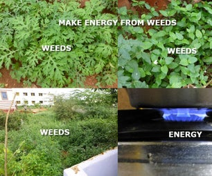 Make Energy From Weeds
