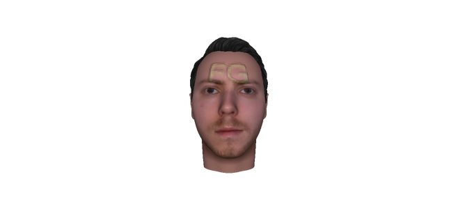 The 3d Face