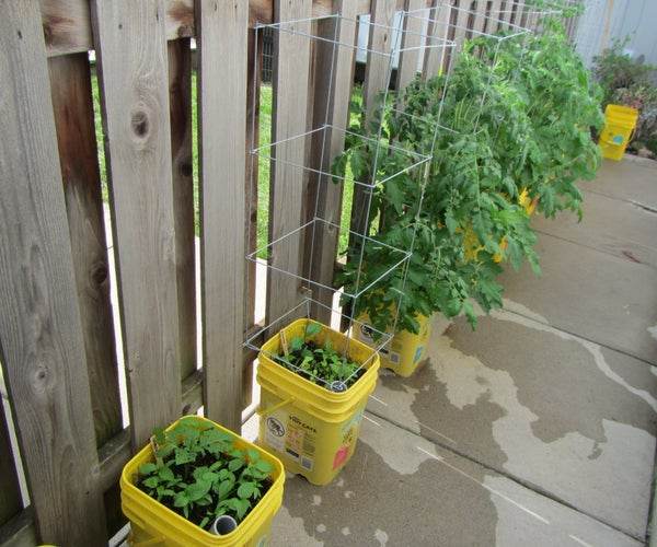 Self-watering Container Garden