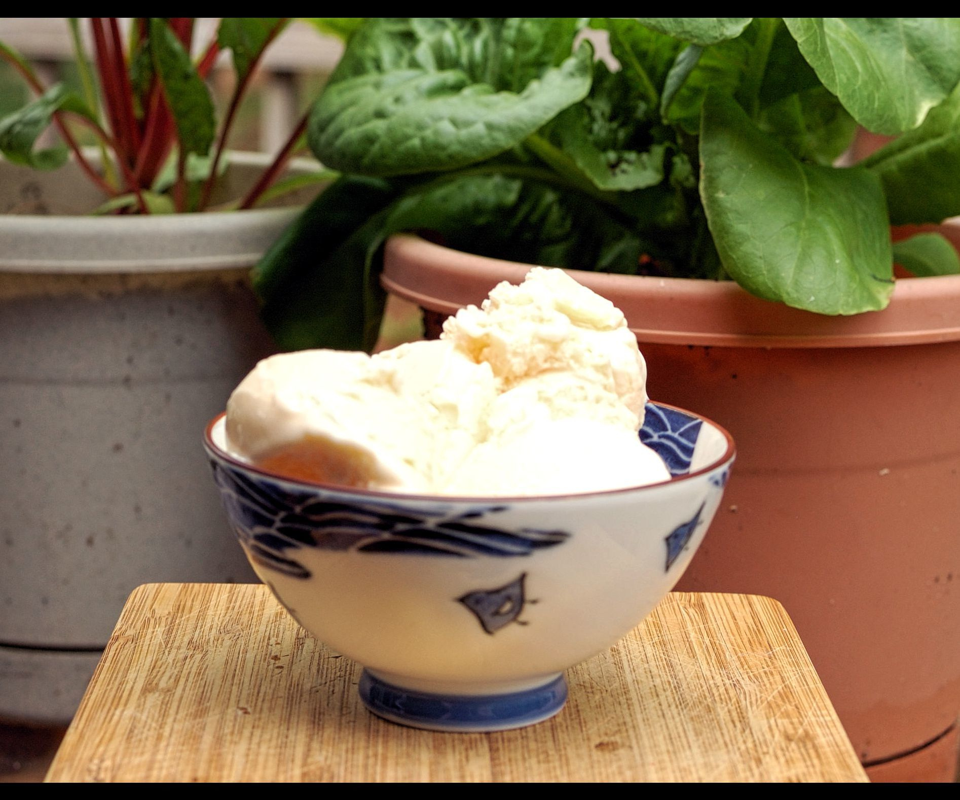 Brown Butter Ice Cream - New England Style