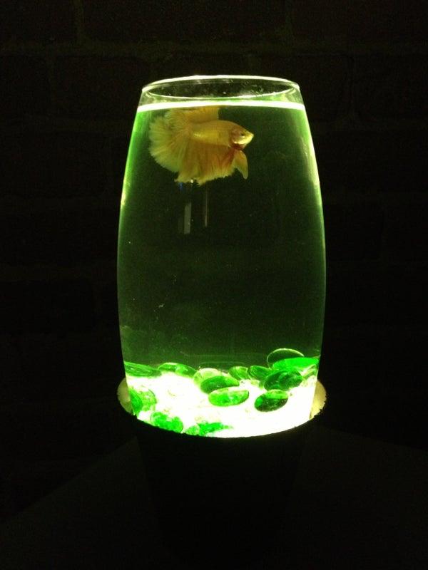 Simple LED Lit Fish Bowl