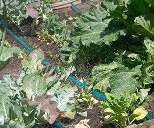 Veggie Garden Soaker Hose Irrigation