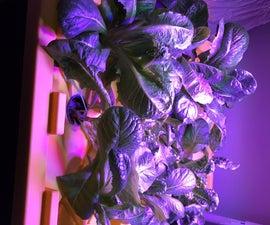 TRUE Aeroponics - Simple Indoors Low Water Lettuce Growing Fogponics System