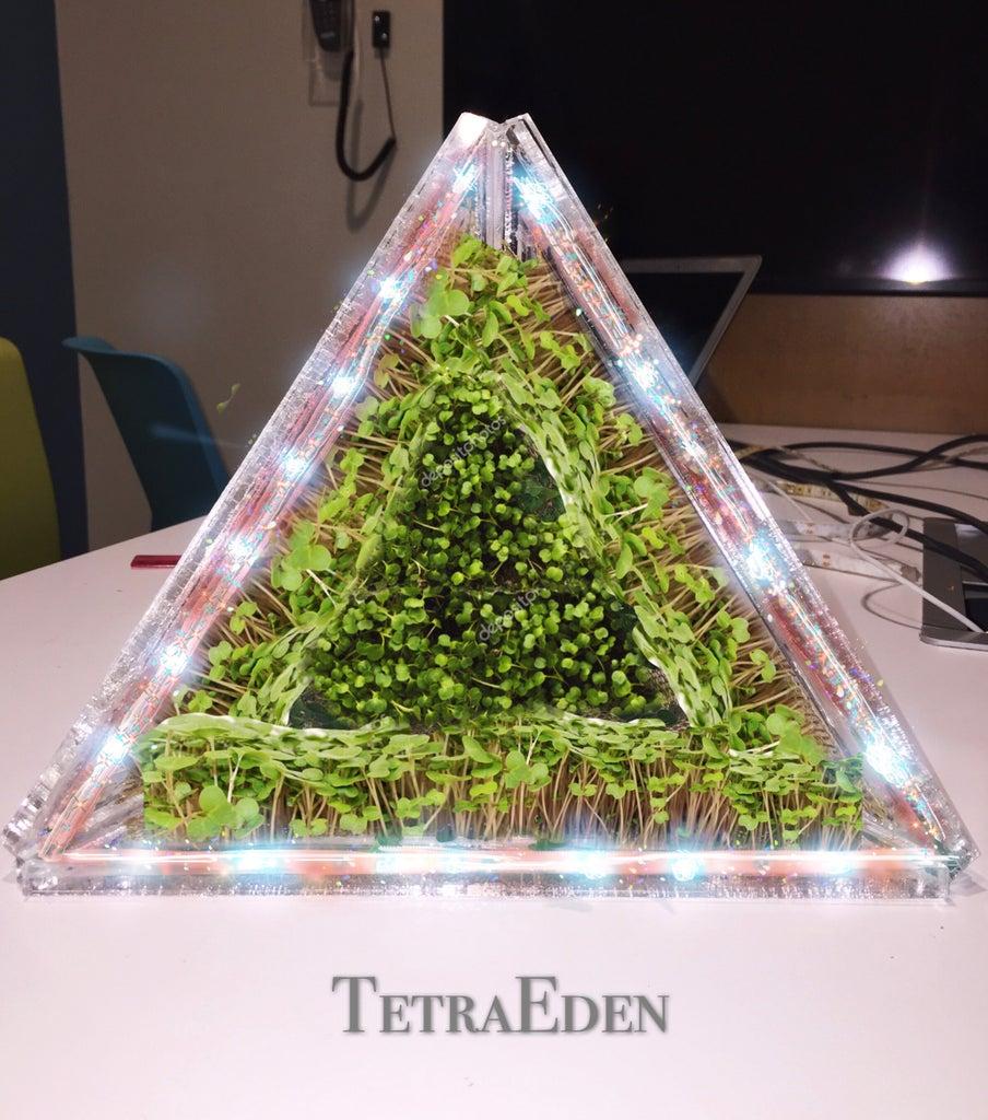 TetraEden
