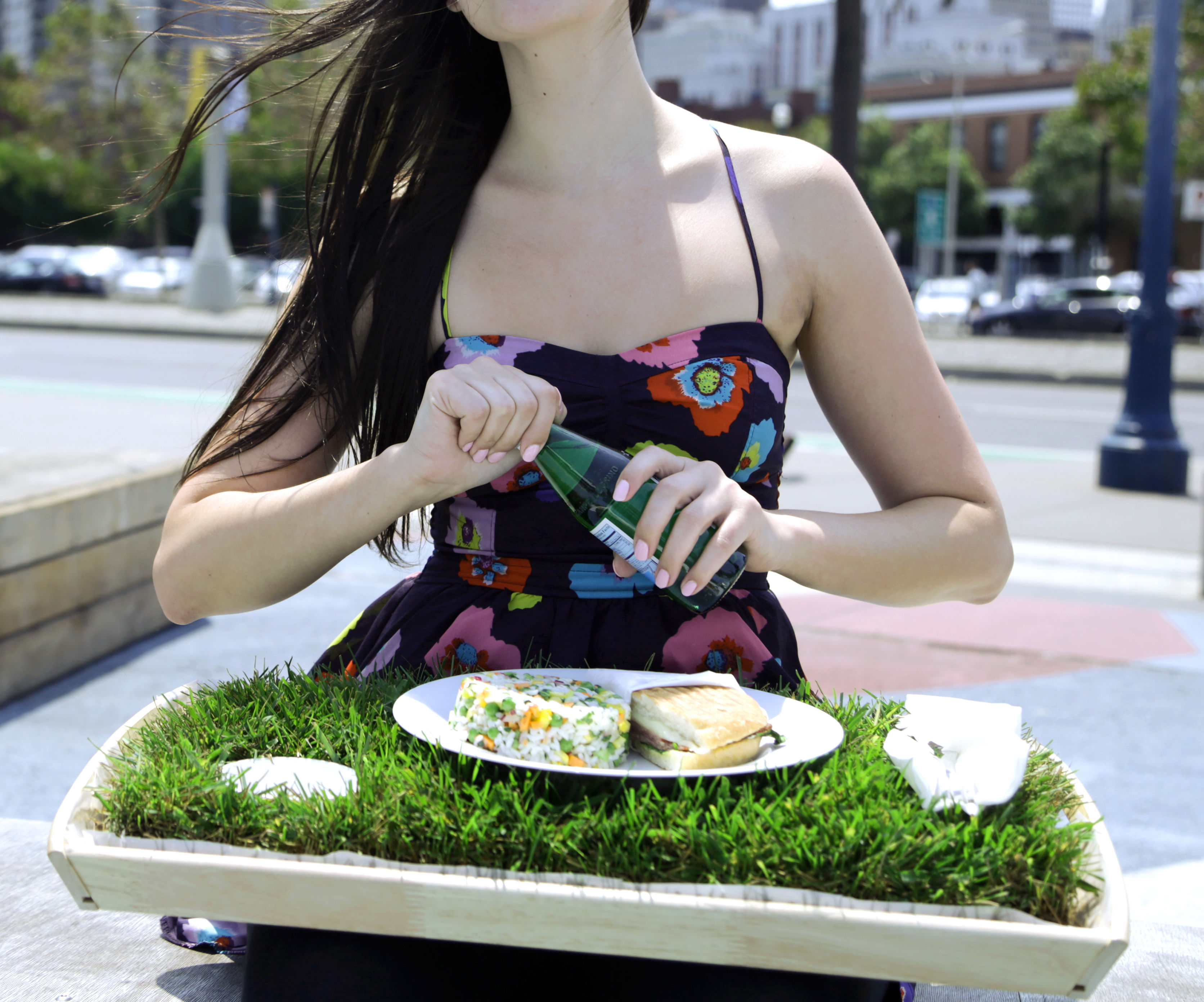 grass lunch tray