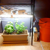 Arduino-Controlled Indoor Garden