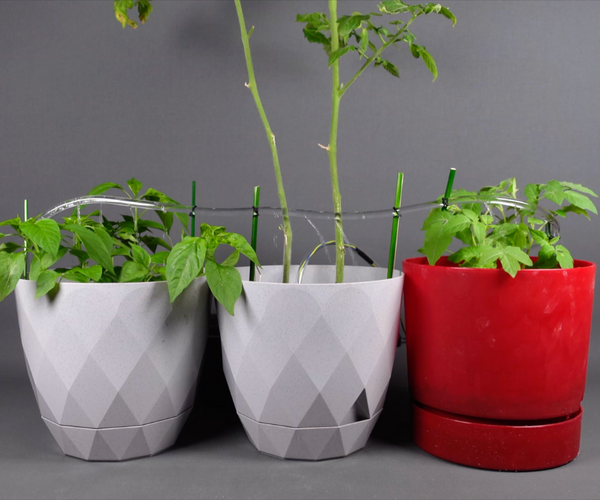 DIY Automatic Plant Watering System