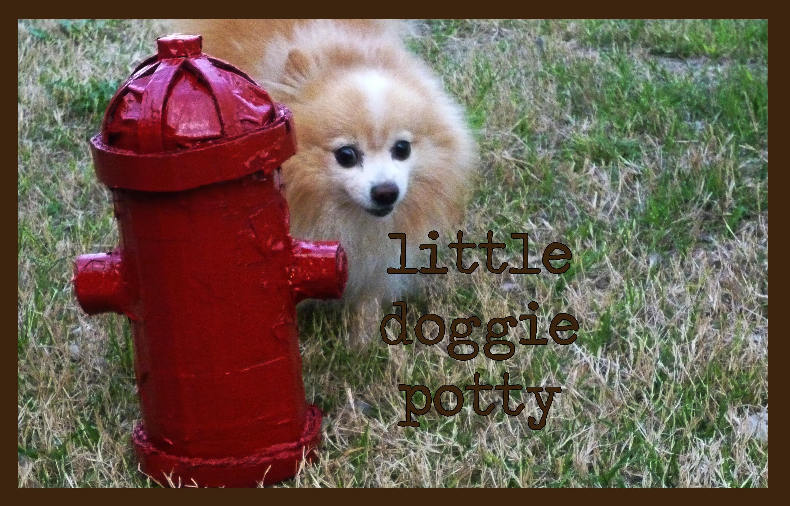 Little Doggie Potty