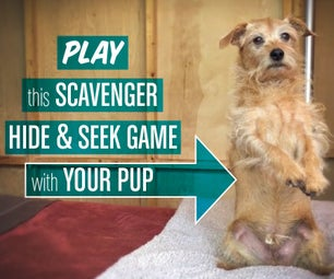 "Scavenger ""Hide & Seek"" Game for Dogs"