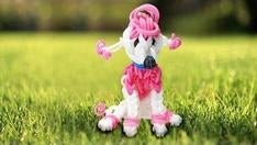 Rainbow Loom Poodle