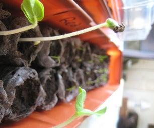 Growing Plants in a Window Greenhouse