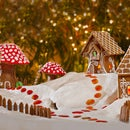 A Fairy Garden Winter Wonderland