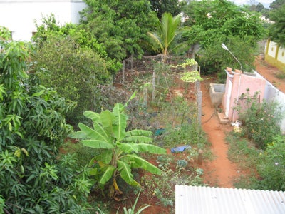 Summer Fun : How We Created Our Home Garden