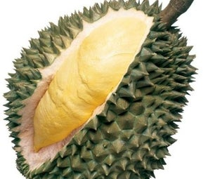 Everybody How Think Durian? or What Are the Benefits of Eat Durian?