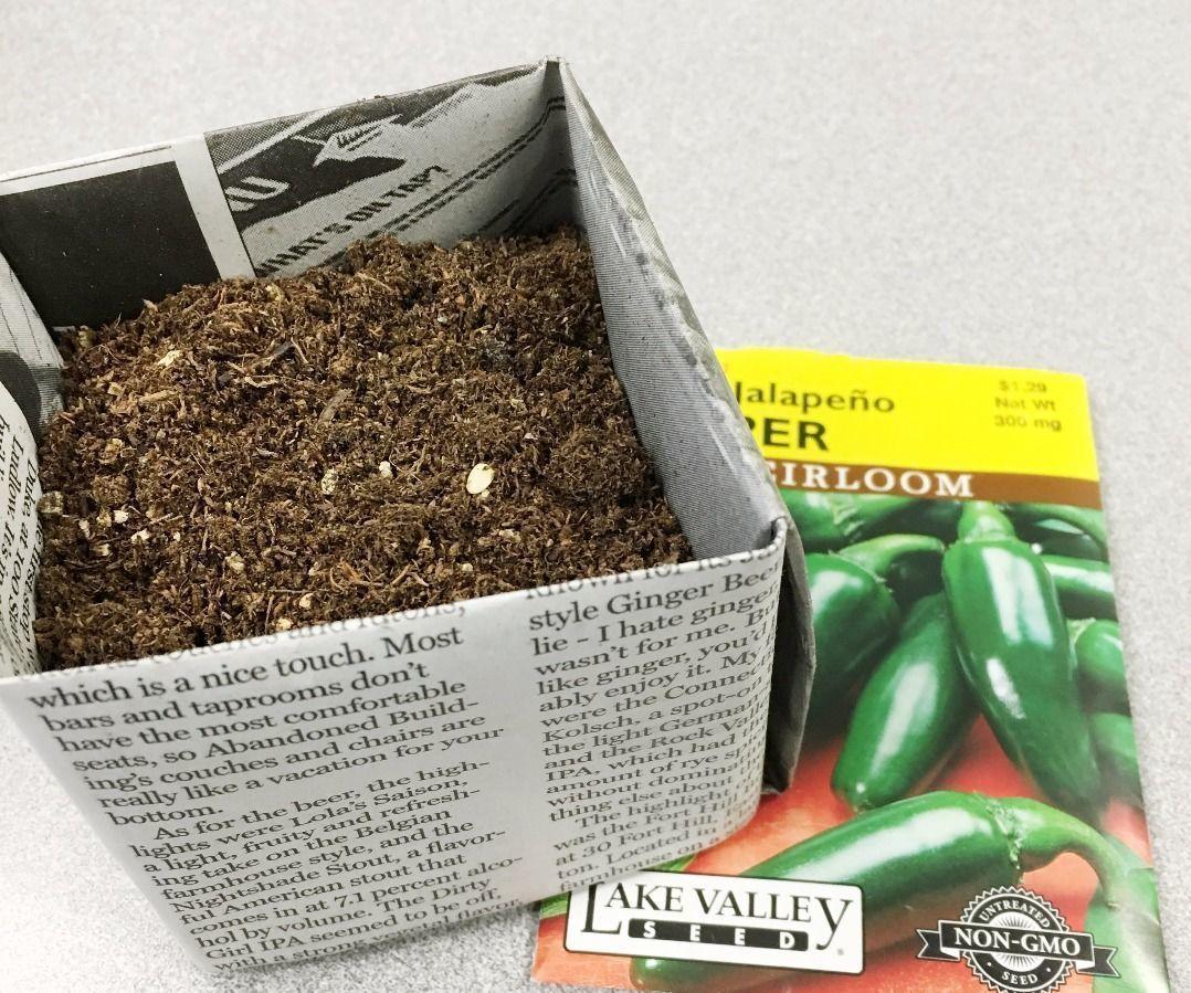 DIY Newspaper Pots