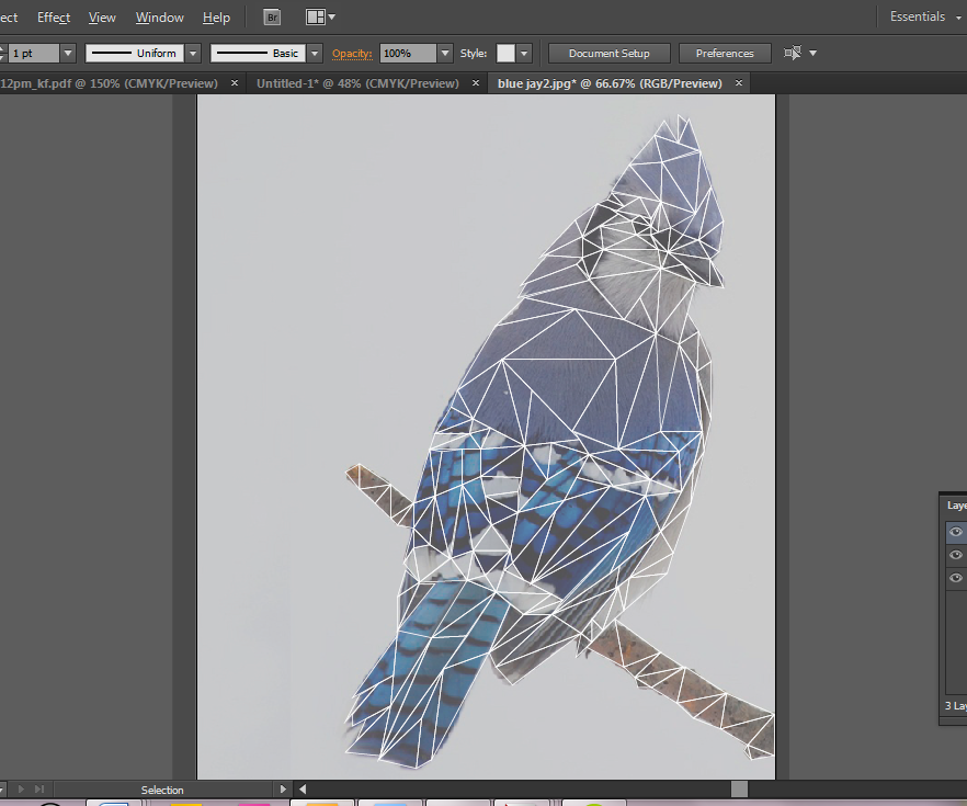 How to Make a Polygon Style Illustration
