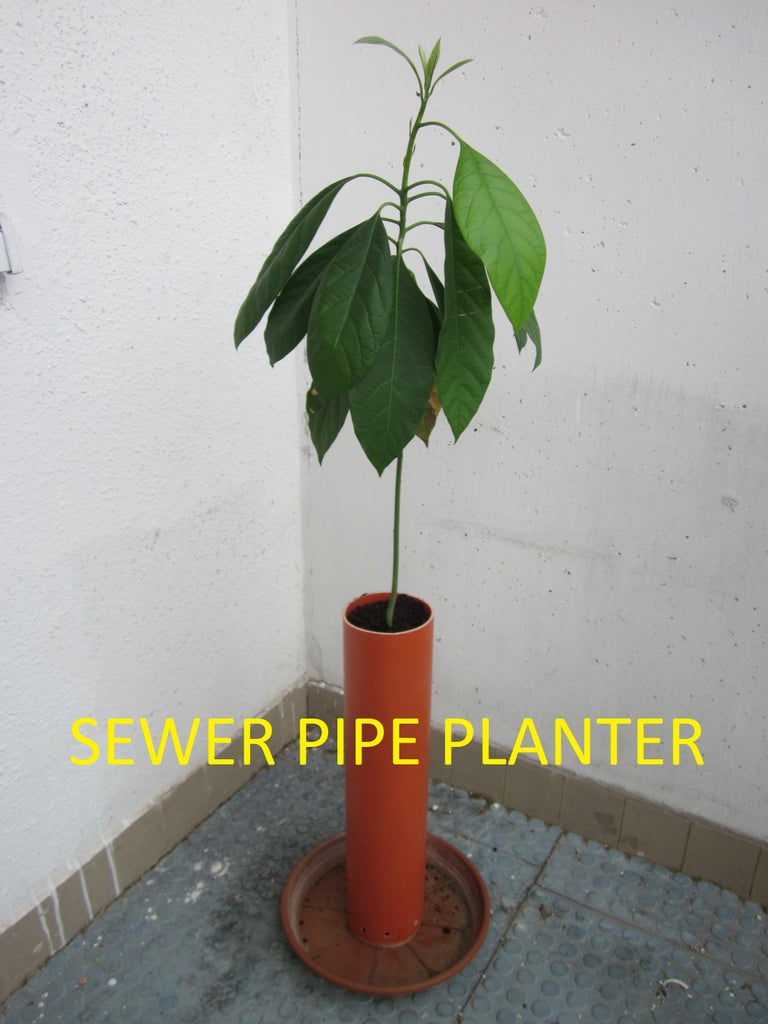 Basic Sewer Pipe Planter