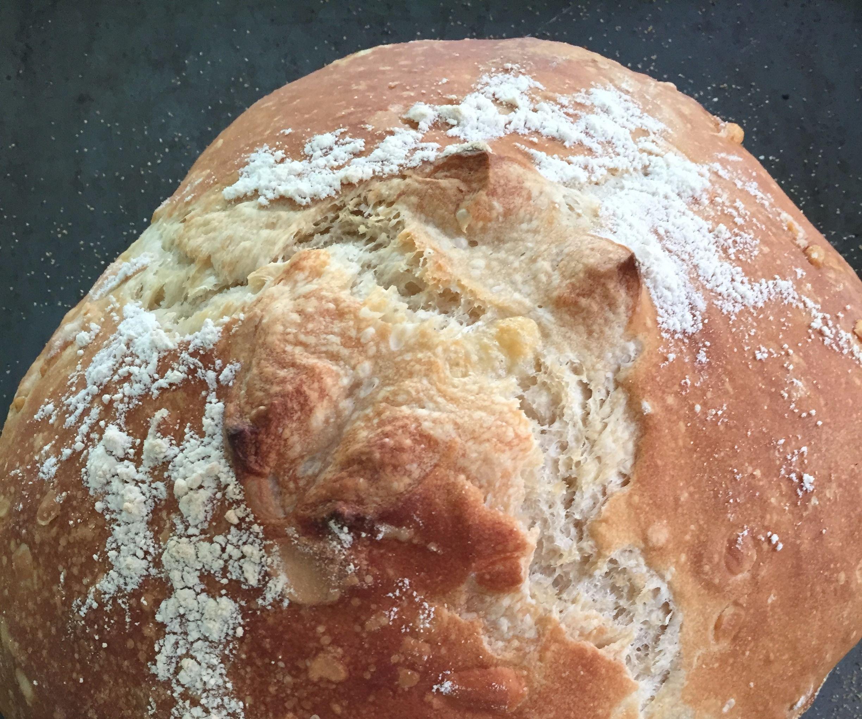 Easy Cheesy No Knead White Bread