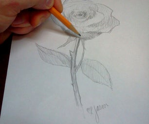 How to Draw a Rose in Pencil Step by Step