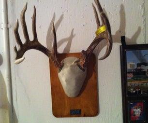 Homemade Deer Antlers Mount