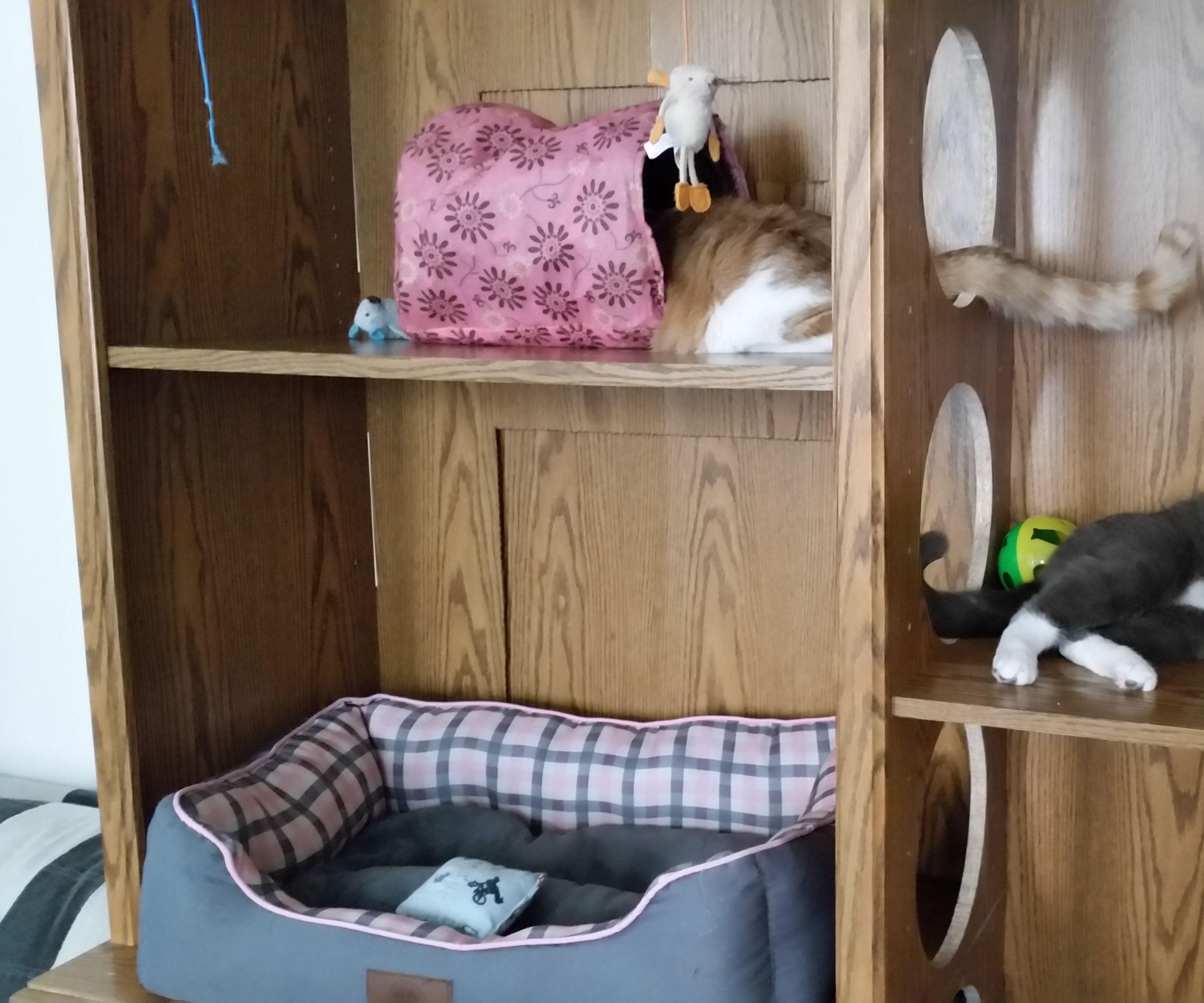 Cheap Cat House