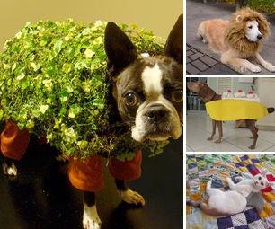 Ultimate Halloween Pet Costume Resource