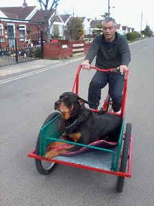 The Tyler Trike / Cargo bike