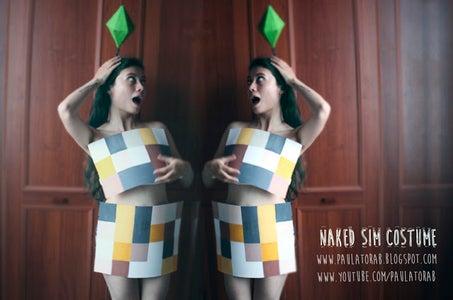 Naked Sim Costume