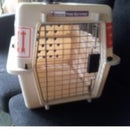 Calm Down A Pet In A Carry Case!