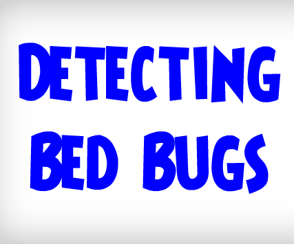 ULTIMATE Guide on How to Detect Bed Bugs | Detecting a Bed Bug Infestation