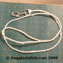 How To Upcycle Plastic Shopping Bags Into A Braided Dog Leash