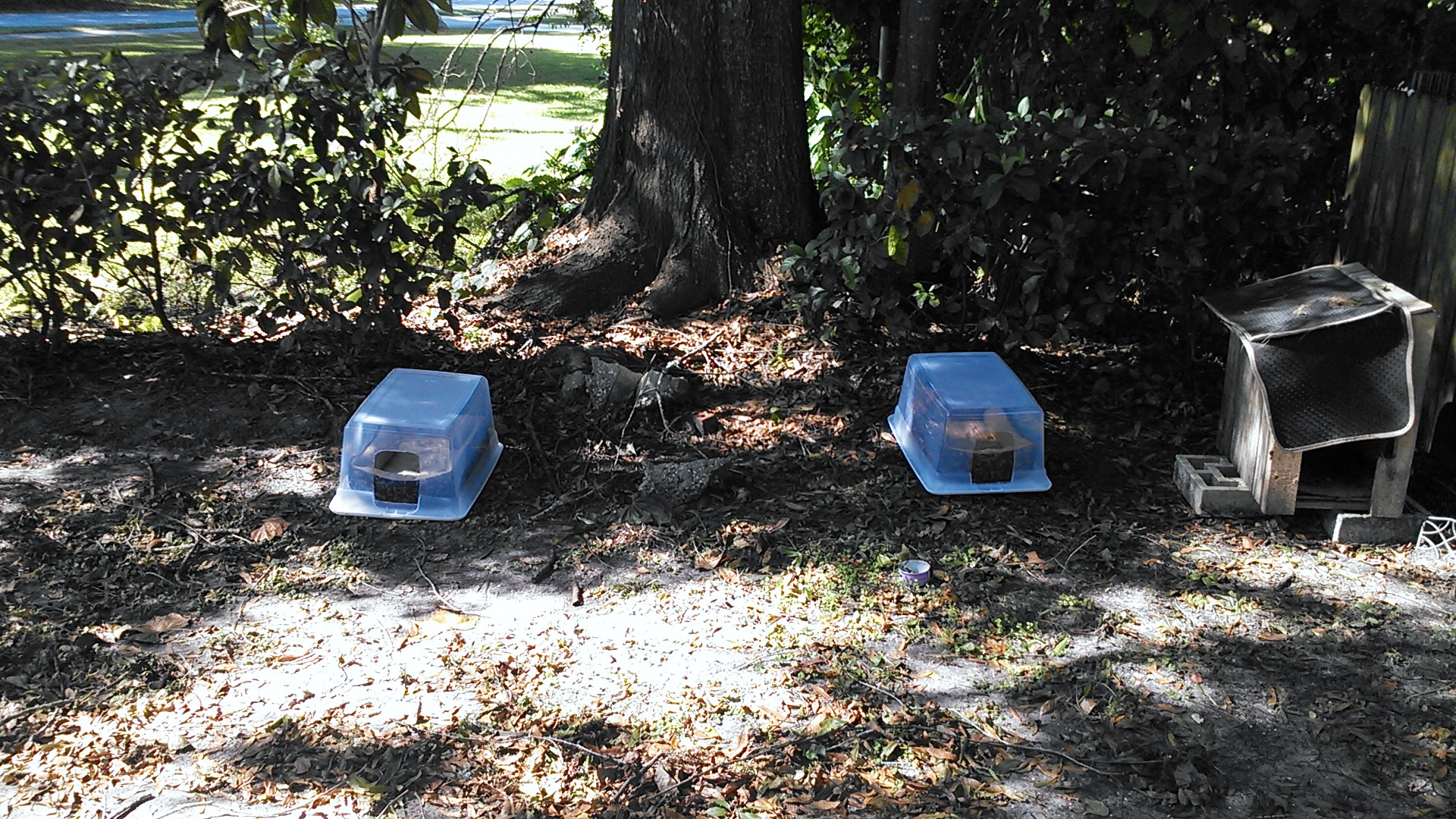 Cat houses for our feral friends