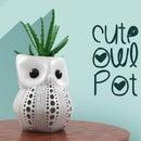 Cute Owl Pot for Succulents