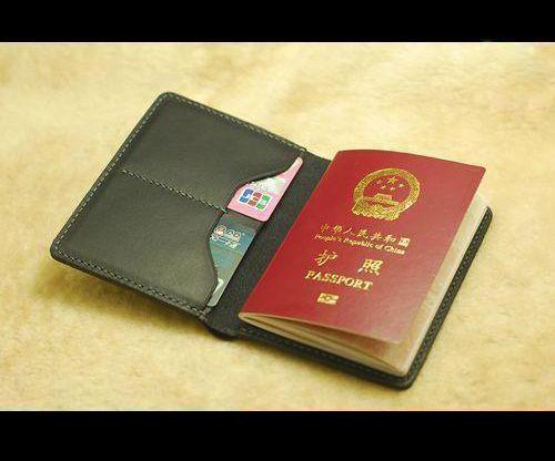 Passport Sleeve