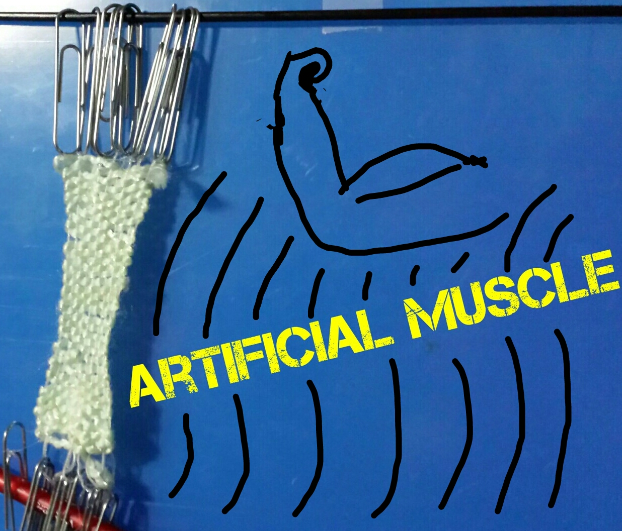DIY artificial muscle