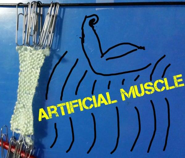 DIY Artificial Muscle