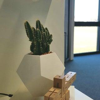 DIY Levitating Plant!