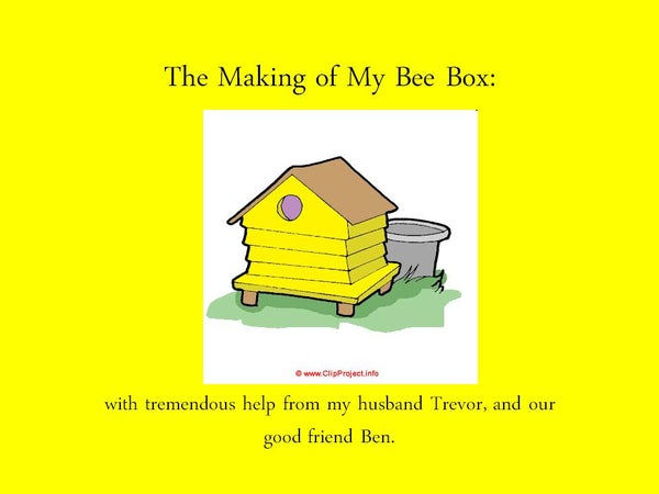 A Bee-utiful Bee Box for a Hive